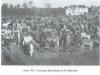 anno-1925-il-mercato-del-bestiame-in-via-mercanta